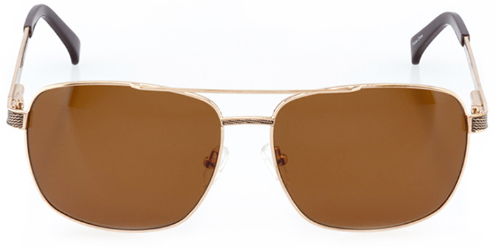 modena: men's square sunglasses in brown - front view