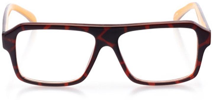 santa cruz: men's rectangle eyeglasses in brown - front view