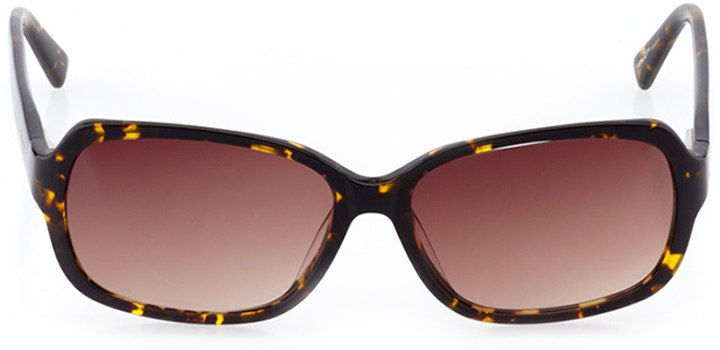 le havre: women's oval sunglasses in brown - front view