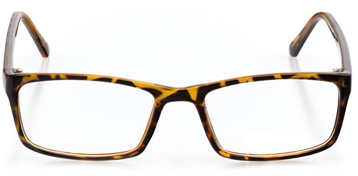 austin: women's rectangle eyeglasses in tortoise - front view