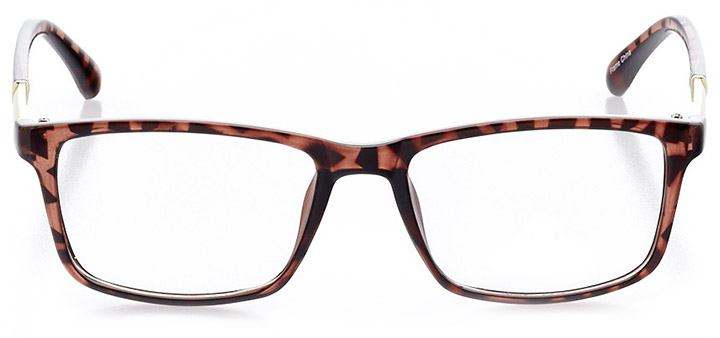 portofino: women's square eyeglasses in tortoise - front view