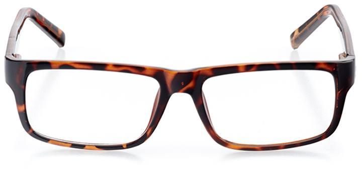 turin: men's rectangle eyeglasses in tortoise - front view