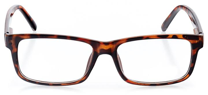 alicante: men's rectangle eyeglasses in tortoise - front view