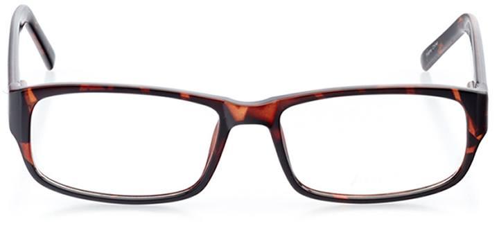 burgas: men's rectangle eyeglasses in tortoise - front view
