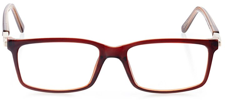 salerno: men's square eyeglasses in brown - front view