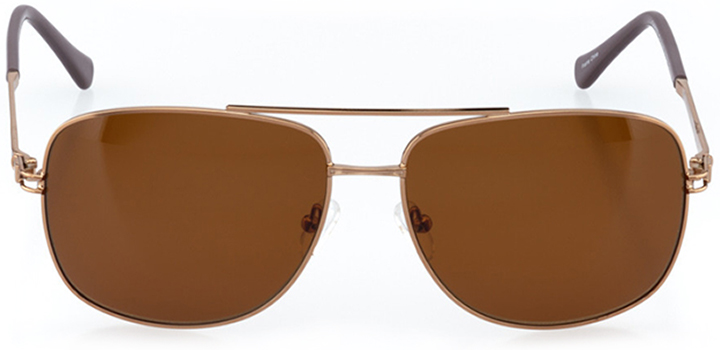 hollywood: men's wrap sunglasses in brown - front view