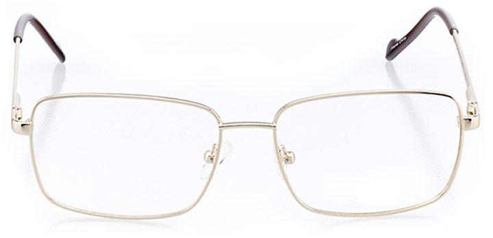 amherst: men's rectangle eyeglasses in gold - front view