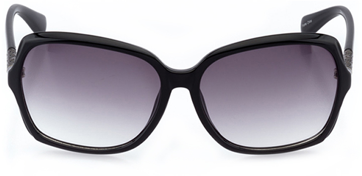 bayonne: women's butterfly sunglasses in black - front view