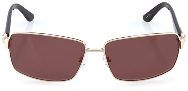 patras: men's rectangle sunglasses in gold - front view