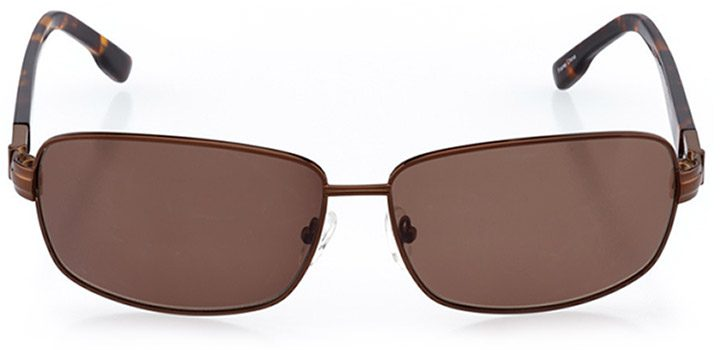 aberdeen: men's rectangle sunglasses in brown - front view
