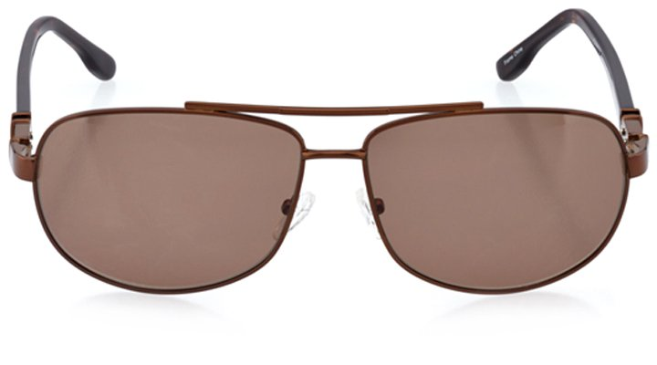 trondheim: men's rectangle sunglasses in brown - front view
