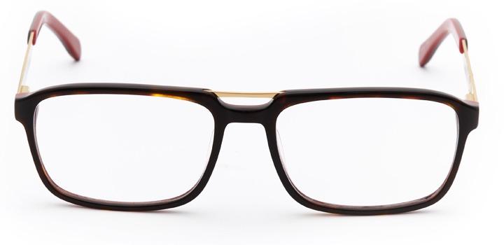 vincennes: men's rectangular eyeglasses in tortoise - front view