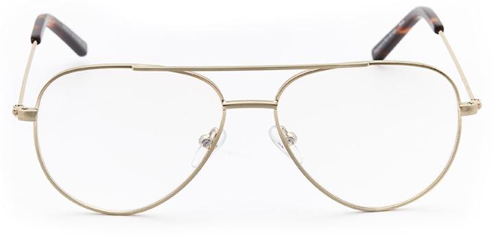 pembroke: aviator eyeglasses in gold - front view